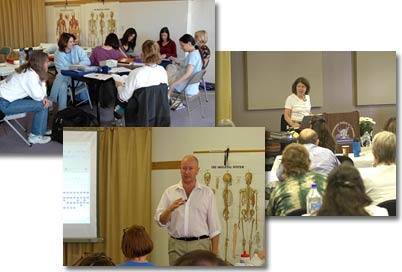 Activities at the Homeopathy School